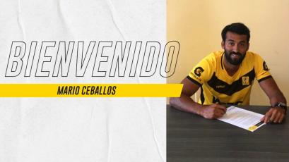 Mario Ceballos vuelve a Academia Cantolao
