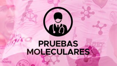 Liga1 Movistar: Sport Boys inicia las pruebas moleculares el fin de semana